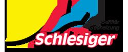 Manfred Schelsiger